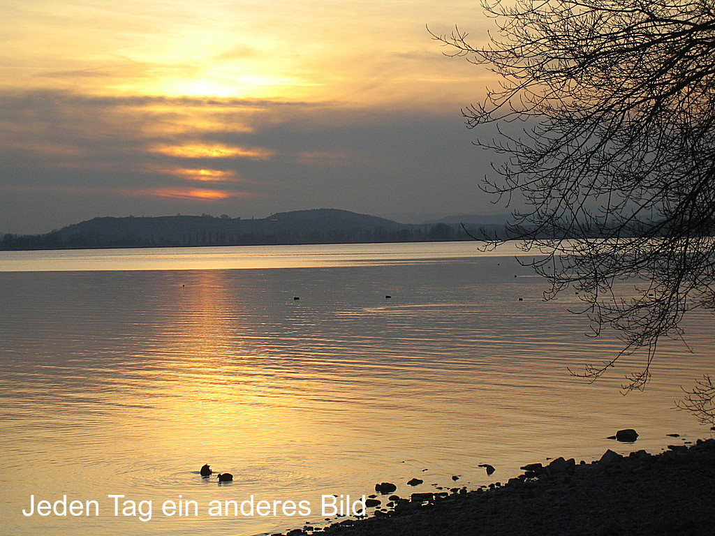 Urlaub am Bodensee in Radolfzell-Mettnau